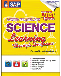 Lower Secondary Science Learning Through Diagrams